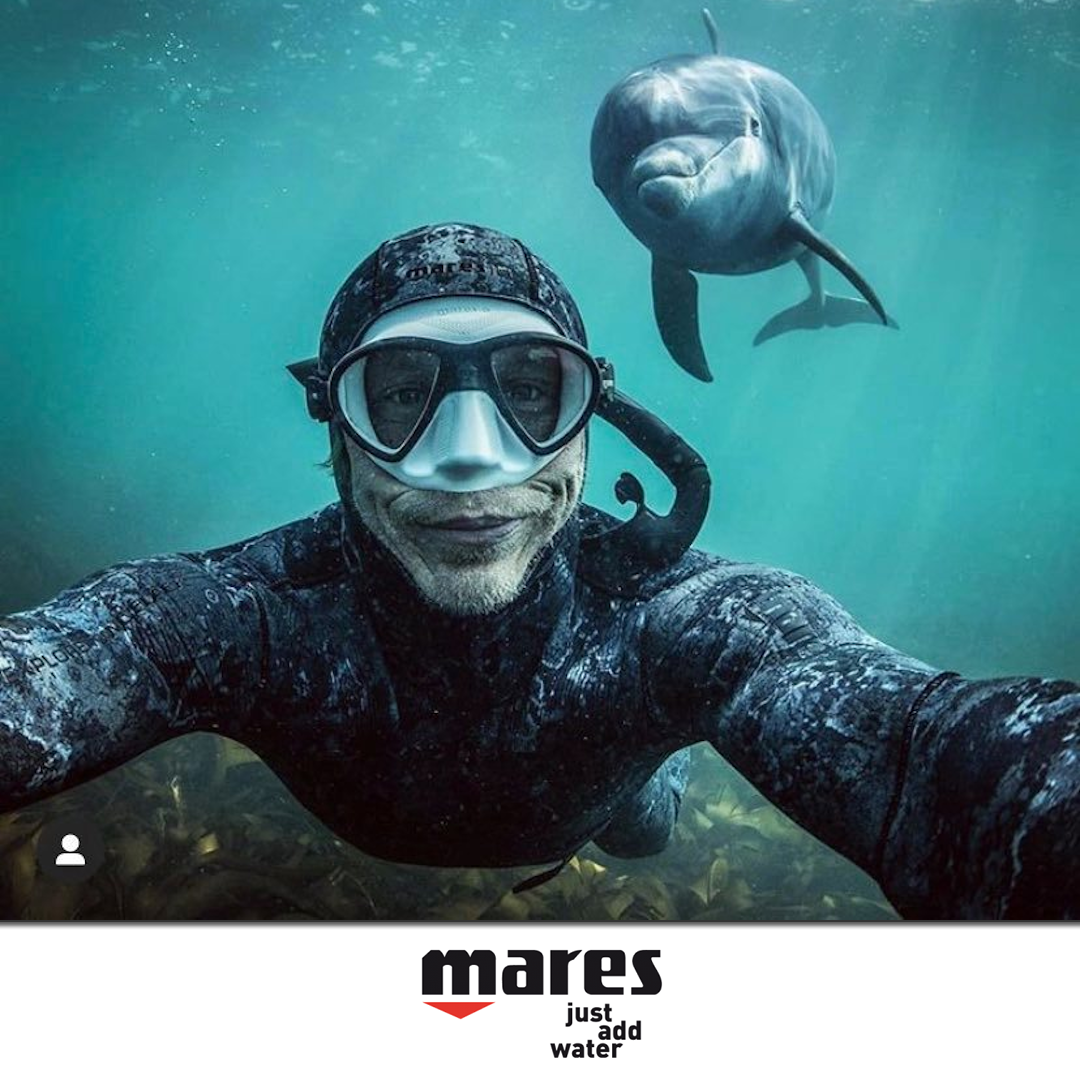 post_mares_dolphin
