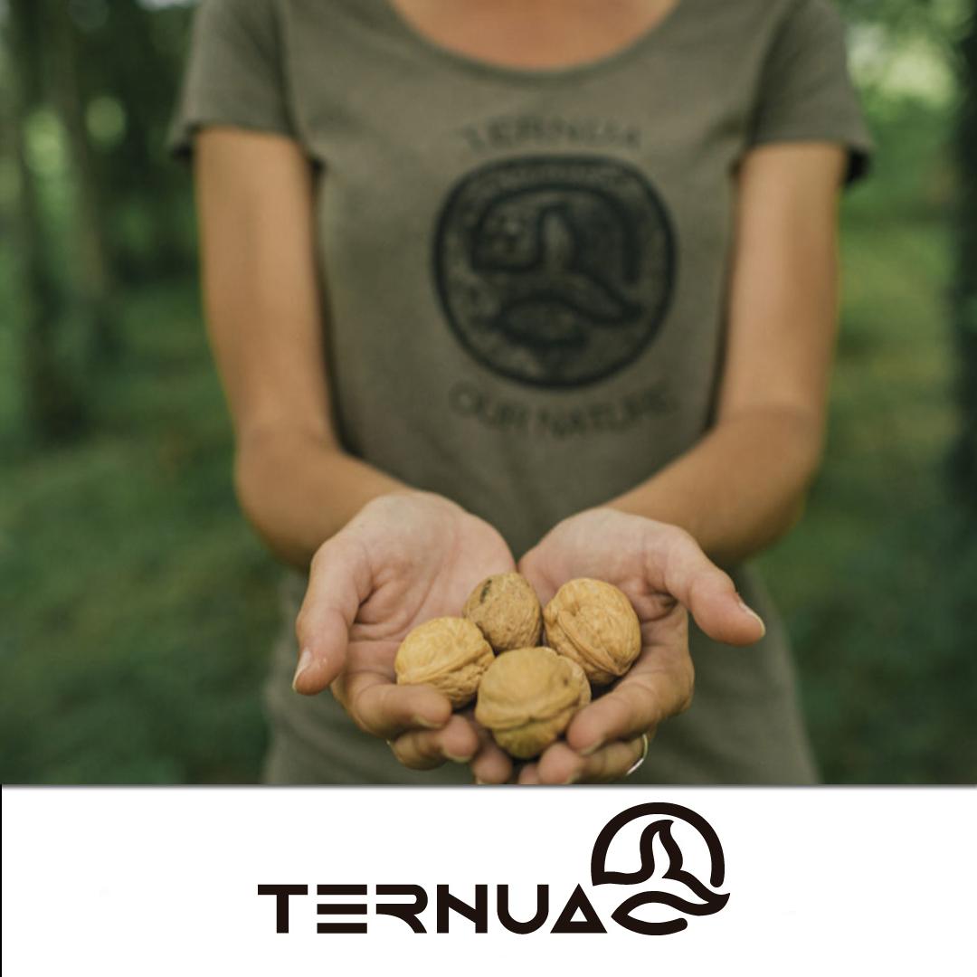 post_ternua_shells